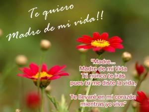 frases para una madre flores
